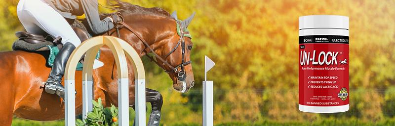 UnLock horse muscle formula
