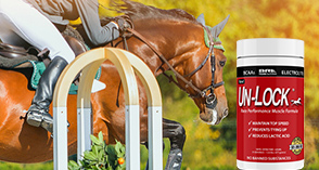Un-Lock horse muscle supplement